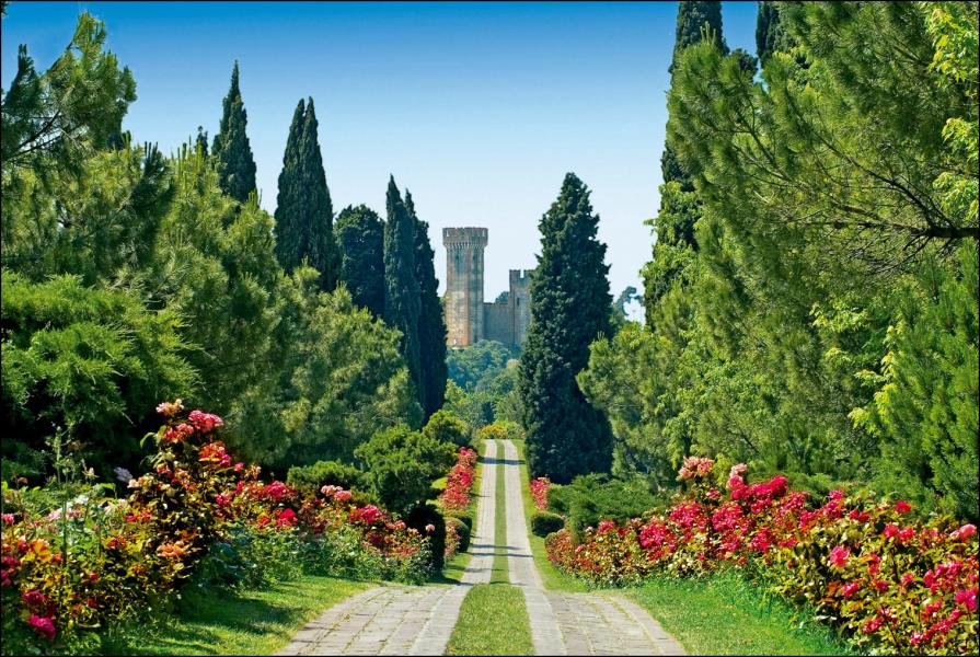 Parco Sigurta', Viale delle Rose